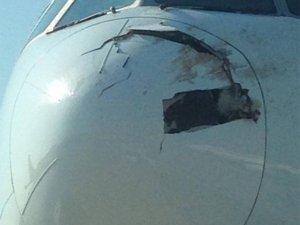 Singapur uçağına kuş çaptı