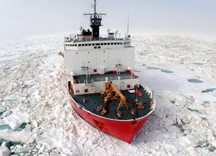 Kuzey Kutbu'nda enerji savaşları başladı
