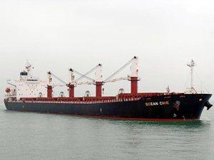 M/V OCEAN CHIE, 8 milyon 200 bin dolara Türk alıcıya satıldı