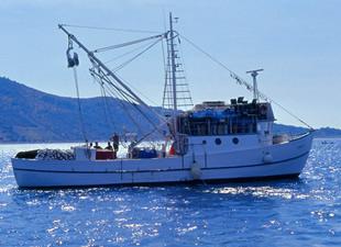Antalyalı balıkçılar TURMEPA'ya üye oldu