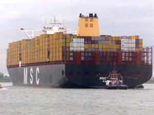 MSC MAYA, Antwerp Limanı'nda yapılan törenle vaftiz edildi