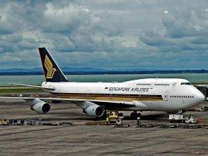 Singapore'un kargo uçağına koyun engeli
