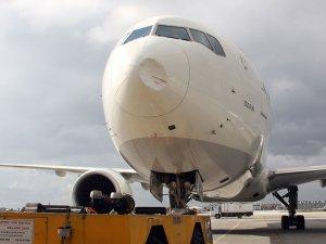 THY uçağına kuş çarptı; bu hale geldi