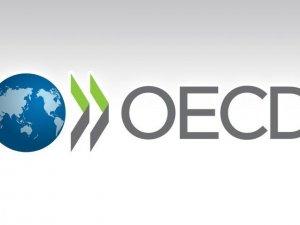 OECD dünya ekonomisi için 2016 yılında kötümser tablo çizdi