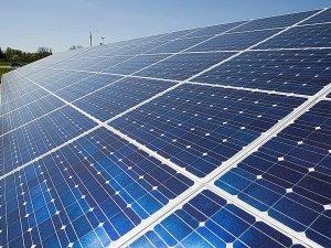 Kıbrıs Üniversitesi güneş parkı yapmaya hazırlanıyor