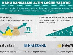 Kamu bankaları altın çağını yaşıyor