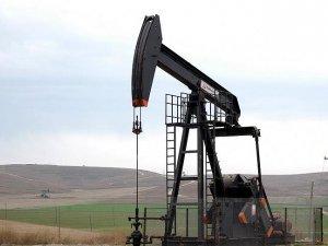 TPAO, 2 yıl daha Batman'da petrol arayacak