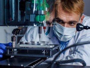 3D yazıcı ile organ nakli