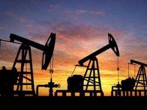 Brent petrol 46 doların üzerinde
