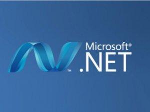 Microsoft .NET Framework nedir?