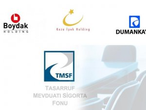 TMSF dev bir holding gibi